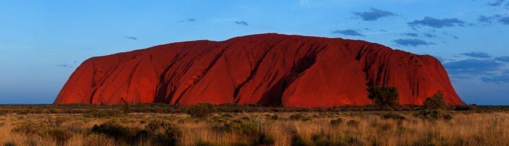 Kangaroo MusiQue